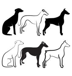 Dogs silhouettes logo vector image