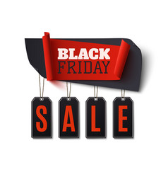 black friday sale abstract banner isolated on vector image