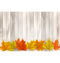 Happy Thanksgiving background with colorful leaves vector image vector image