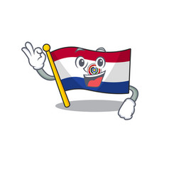Cartoon flag paraguay isolated in okay character vector