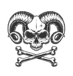 devil skull without jaw vector image