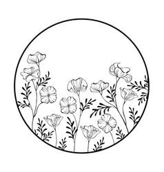 Frame with contour california poppy vector