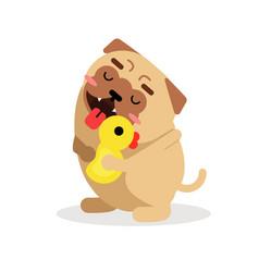 funny cartoon pug dog character hugging yellow vector image