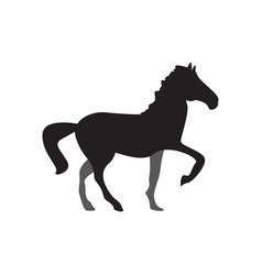 horse icon design template isolated vector image