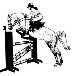 jumping show horse with jockey jumping a hurdle vector image