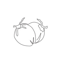 one continuous line drawing whole healthy vector image