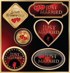 Just married golden labels vector image vector image