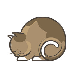 cute sleepy brown cat vector image