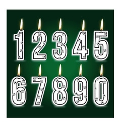 numeral birthday candles vector image vector image