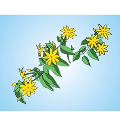 branch with green leaves and yellow flowers vector image