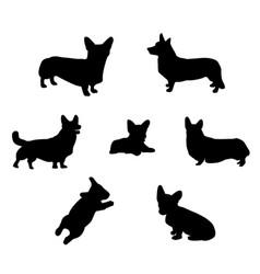 Pembroke welsh corgi silhouette vector