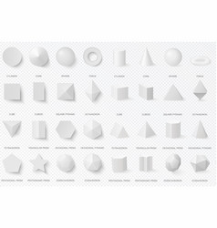 realistic white basic 3d shapes in top and front vector image