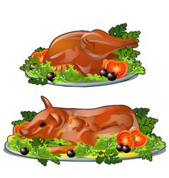 Set fresh grilled chicken and pork vector