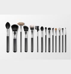 set of black clean professional makeup vector image