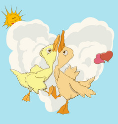 two ducks swirl in love dance vector image