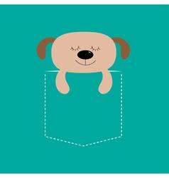 Bear sleeping in pocket cute cartoon character vector