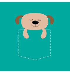 Bear sleeping in the pocket Cute cartoon character vector