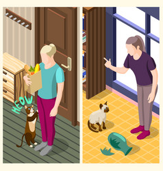 Cat ordinary life isometric banners vector