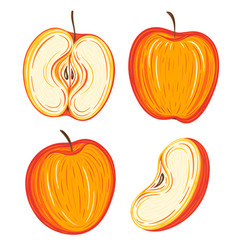 colorful hand drawn red apples collection vector image