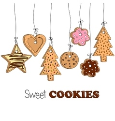 different kinds home made cookies vector image