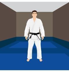 Men in sport wear judo and jiu-jitsu vector
