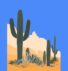 Mexico pattern with opuntia agave and saguaro vector