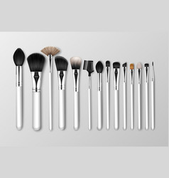 set of black clean professional makeup vector image