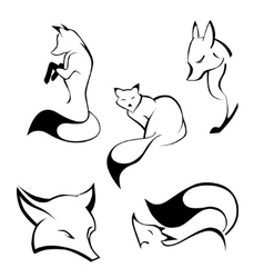 Set of foxes in curve lines vector