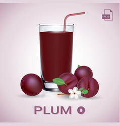 Set of plum juice and fresh ripe fruits vector