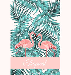 Tropical card jungle leaves flamingo birds couple vector