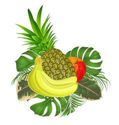 Tropical fruit set with tropical leaves vector