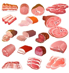 set of different kinds of meat vector image vector image