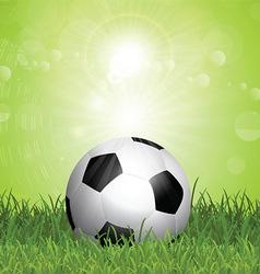 Soccer ball in grass vector image