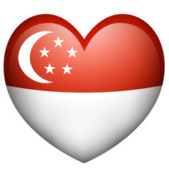 flag icon design for singapore vector image