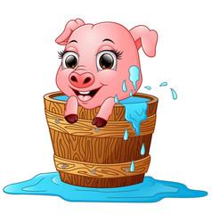 cute cartoon pig bathing vector image