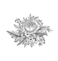 Flower bouquet floral sketch engraving background vector