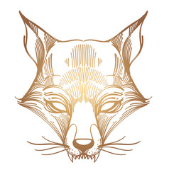 muzzle fox for creating sketches of tattoos vector image