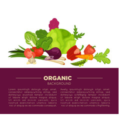 organic food poster background of fresh vegetables vector image