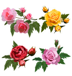 Set with roses vector