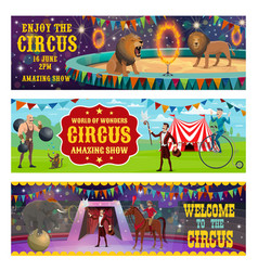 Circus animals show and performance vector