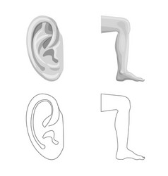 isolated object of human and part symbol set of vector image
