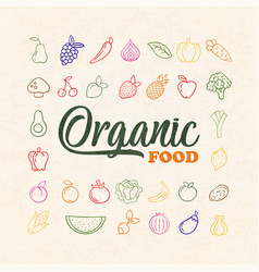 organic vegetable and fruit food outline icon set vector image