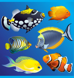 realistic exotic marine underwater fauna set vector image