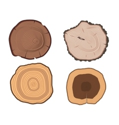 Tree slices set vector image vector image