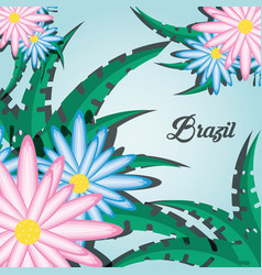 brazil design with flowers and leaves vector image