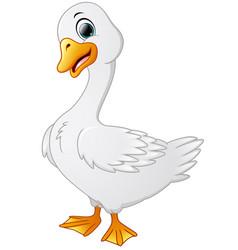 Cute cartoon swans vector
