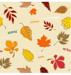 Doodle autumn leaves pattern seamless vector