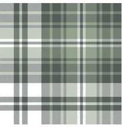 Green plaid pattern graphic vector