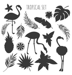 Grey tropical plants and flamingos silhouettes vector