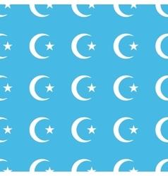 Turkey symbol straight pattern vector image